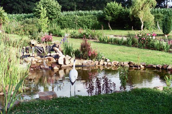 Au jardin des amis pattes pension animali re landujan for Au jardin des amis